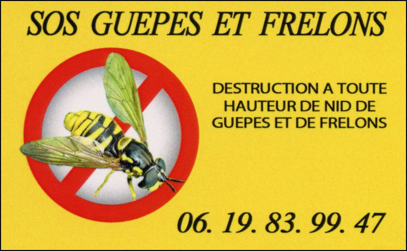 destruction de guepes et frelons 27150
